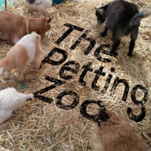 PettingZoo